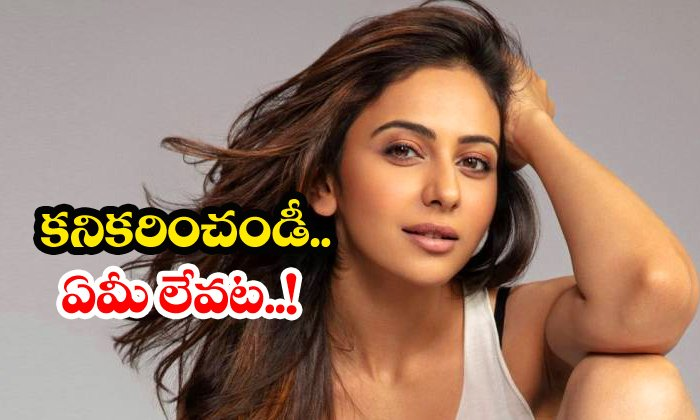 Rakul Preet Singh Requesting Offers-rakul Preet Singh,telugu Movie News-Telugu Gossips Rakul Preet Singh Requesting Offers-rakul Telugu Movie News-Rakul Preet Singh Requesting Offers-Rakul Telugu Movie News