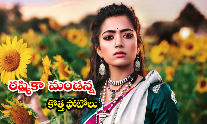 Rashmika Mandanna Stills