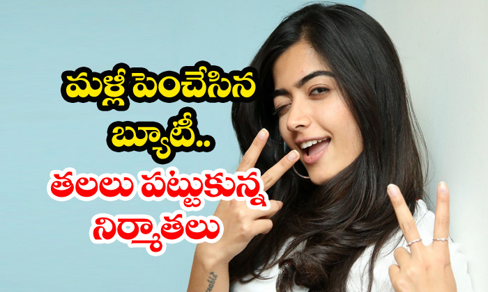 Rashmika Mandanna Hikes Her Remuneration-Remuneration Sarileru Neekevvaru Telugu Movie News