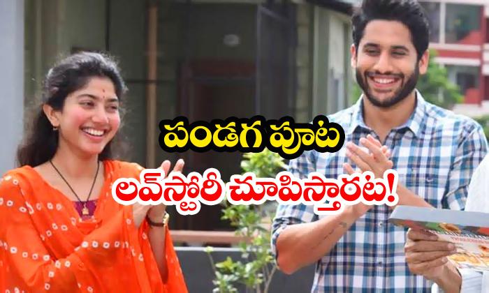 Sekhar Kammula Love Story Movie First Look On Sankranti-Love Naga Chaitanya Sai Pallavi Sankranti