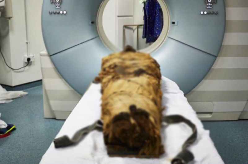 Wonder Mummy Speaks Again After 3 000 Years-3 Egyptian Priest Nesyamun Mummified Body Vocal Tract నెశ్యామన్