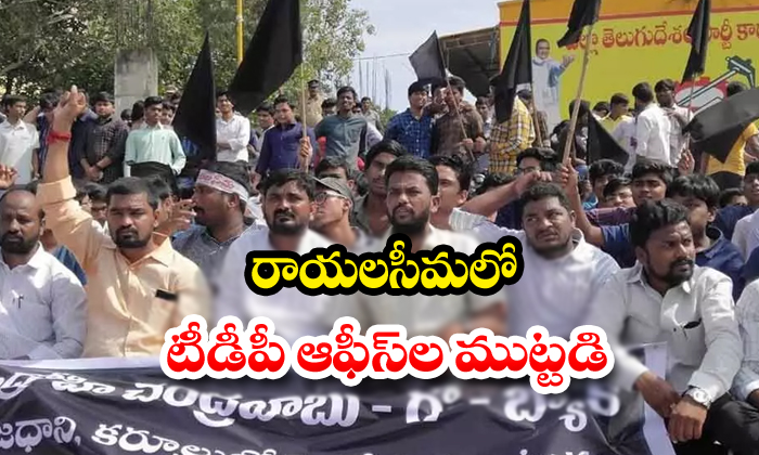 YCP Leaders Protest Against Rayalaseema TDP Offices-Ap Three Capitals Ycp