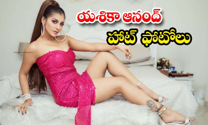 Yashika Aannand spicy images