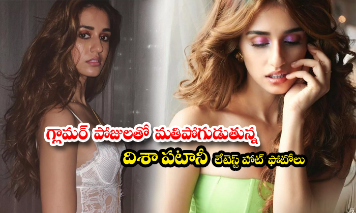 Disha patani hot images