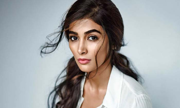 Is Pooja Hegde In Love With Senior Hero Son-Pooja Latest News Pooja Tollywood Atress Tollywood