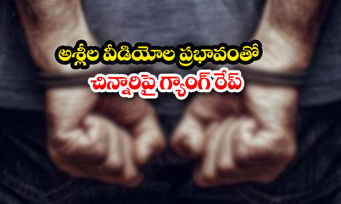 TeluguStop.com - Kakinada Ramu Siva Kites Sankranthi