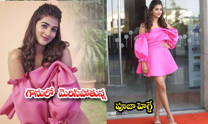 latest photos: Pooja Hegde