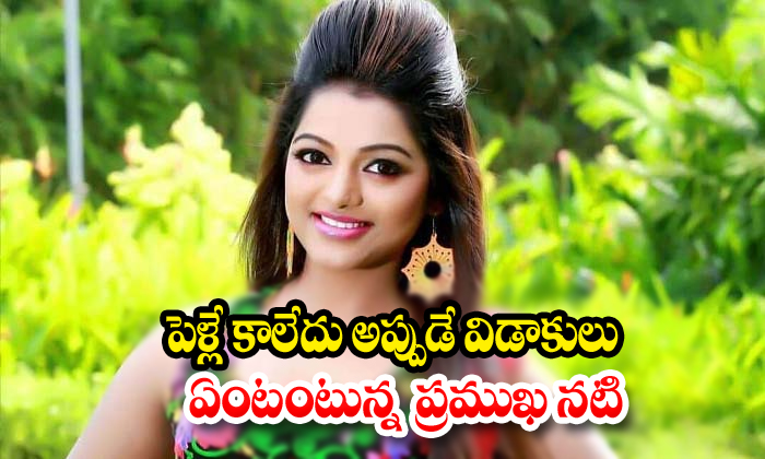 Meera Anil Reacts About Her Marriage Comments-Anchor Meera Latest News