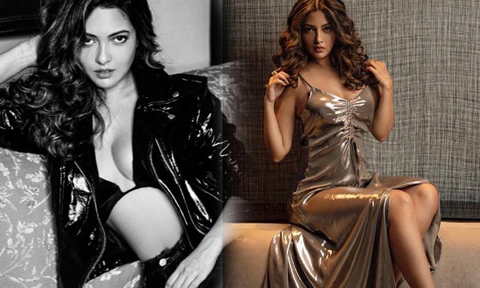Riya Sen Hot Stills - Telugu Bollywood Actress Photos, Bollywood Actress Riya Sn New Images, Gallery, Images, News, , St High Resolution Photo