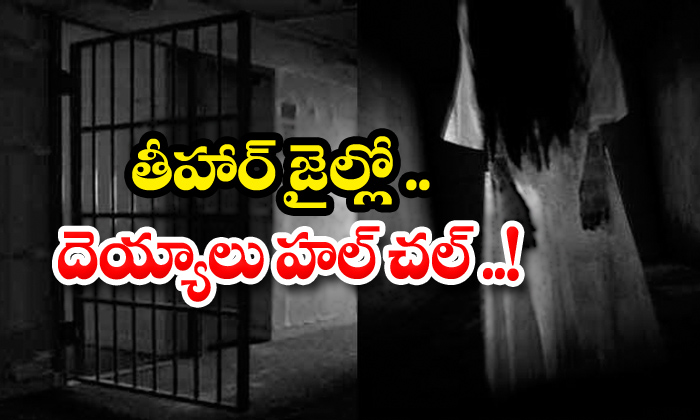 Devils Staying In Tihar Jail-jail,tihar,tihar Jail,tihar Jail News-Telugu Trending Latest News Updates Devils Staying In Tihar Jail-jail Tihar Jail News-Devils Staying In Tihar Jail-Jail Tihar Jail News