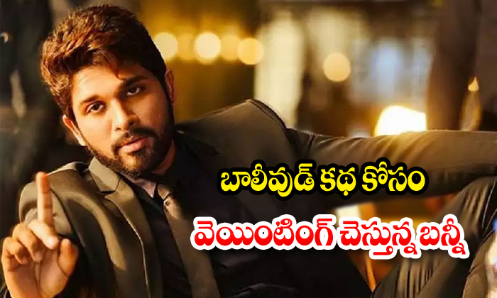 Allu Arjun Interested Act In Bollywood Movie