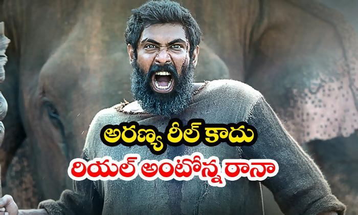 Aranya Is Based On True Story Says Rana - Telugu Jadhav Payeng Prabhu Solomon Daggubati Movie News