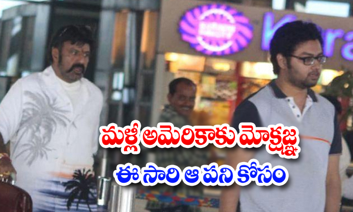 Balakrishna Son Mokshagna Go To America - Telugu Balakrishna Son Mokshagna, Mokshagna, Mokshagna In Over Weight, Mokshagna Latest News, Mokshagna Tollywood Entry, Ram Charan And Mokshagna-Breaking/Featured News Slide-Telugu Tollywood Photo Image