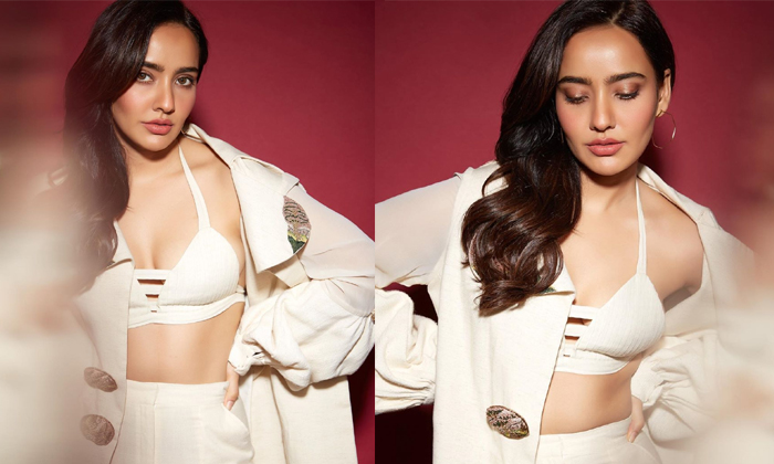 Chirutha Fame Neha Sharma Hot Photos - Telugu , Hot Photos, Movie News, Neha Sharma Hot Photos, Neha Sharma Images, Neha Sharma Latest Images, Photos, Pics And Clips, Spicy Images-telugu Actress Hot P High Resolution Photo