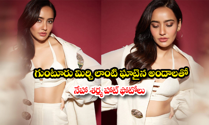 Chirutha fame Neha Sharma hot photos