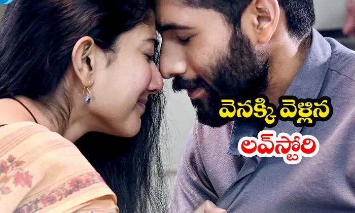 Love Story Movie Release Postponed - Telugu Naga Chaitanya Sai Pallavi Sekhar Kammula News