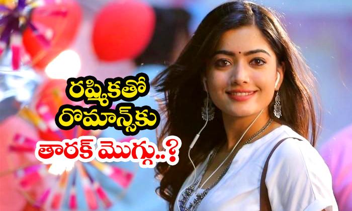 Ntr Keen To Romance Rashmika - Telugu Kalyan Ram, Ntr, Ntr30, Rashmika, Telugu Movie News, Trivikram-Gossips-Telugu Tollywood Photo Image