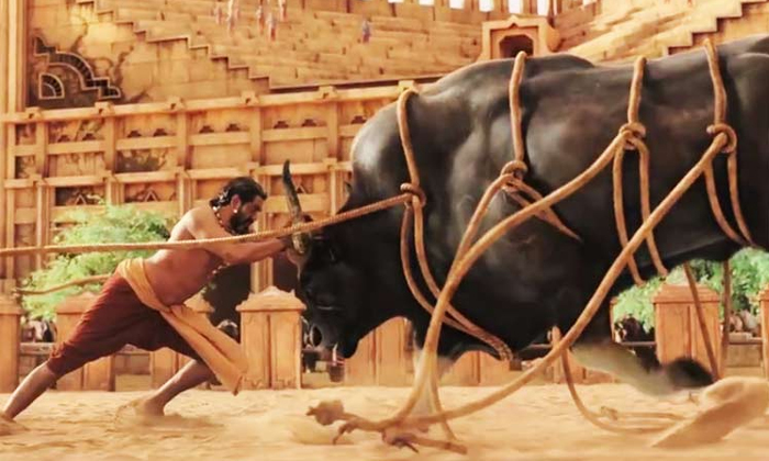 Ram Charan Fight With Bull In RRR Movie-Bahubali Director Rajamouli Ntr And Ramcharan Rrr Latest Update Ram Rana Bahubali Ntr Fughts Graphics