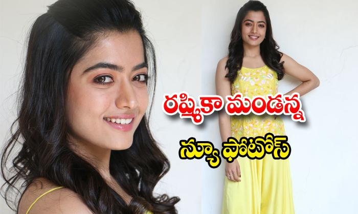 Rashmika Mandanna Photos Telugu Gallery Images Clips Actress Latest Movi Telugustop