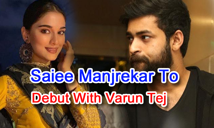 Saiee Manjrekar To Debut With Varun Tej