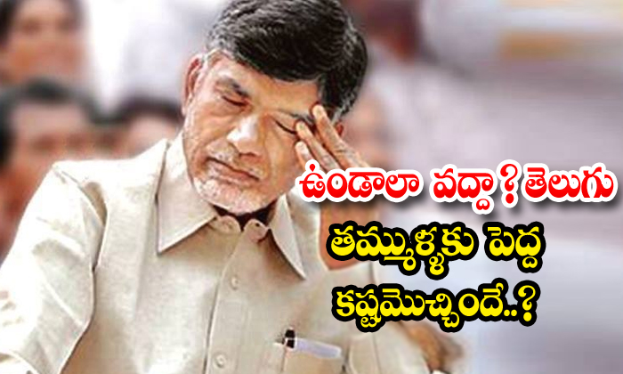 Senior Leaders In Tdp Decided To Leave Party