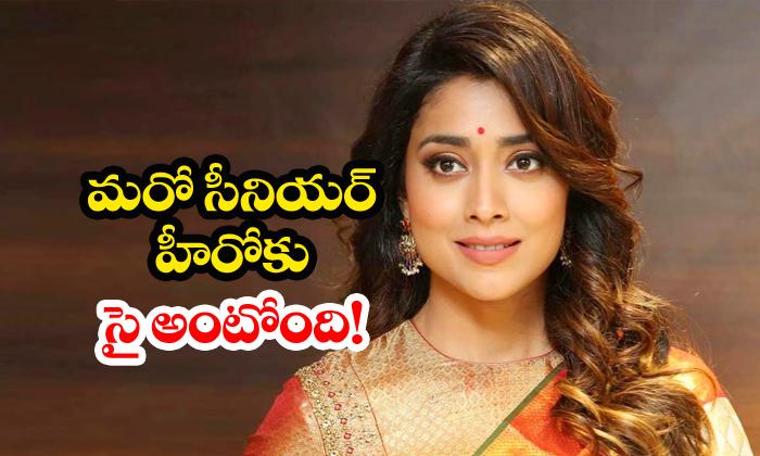Shriya Saran Signs Rajasekhar Movie