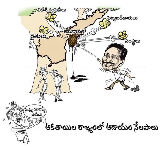Telugu Amaravati No Capital, Ram Mohan Naidu Comments, Tdp Mp Ram Mohan Naidu, Ysrcp Ambati Rambabu-Political-English
