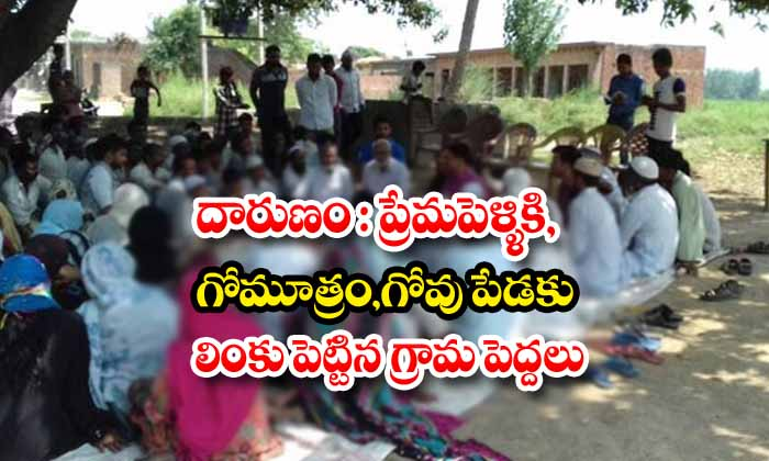 UP Love Couple Made To Eat Cow Dung And Toilet For Inter Caste Marriage-Cow Inter Jhansi Love Marriage Up