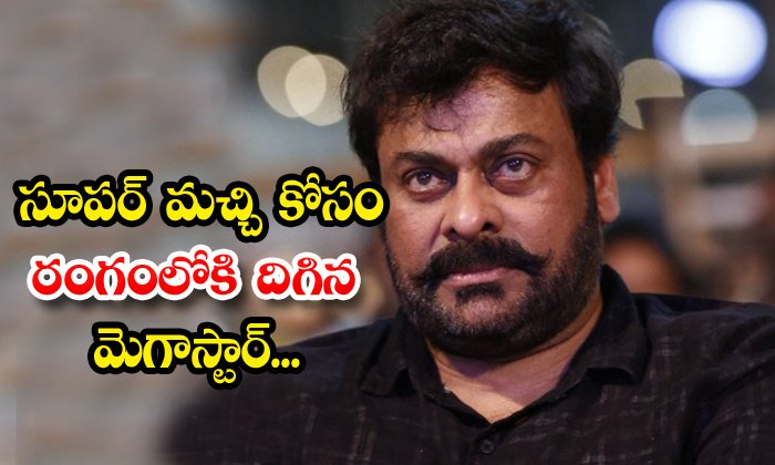 Chiranjeevi Concentrate On His Son In Law Super Machi Film - Telugu Latest Movie News Machhi Kalyan Dev Megastar Tollywood