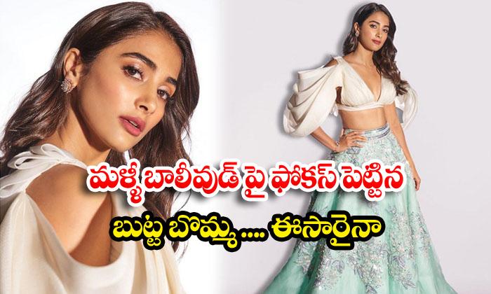 Pooja Hegde Focus On Bollywood Film Industry