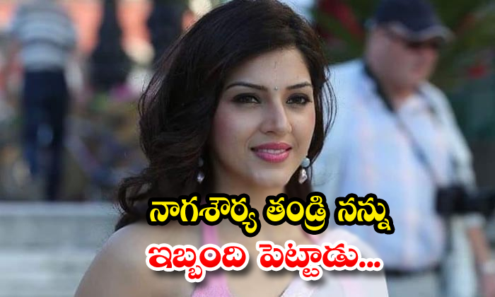 Tollywood Actress Mehreen Pirzada Reacts About Producer Issue
