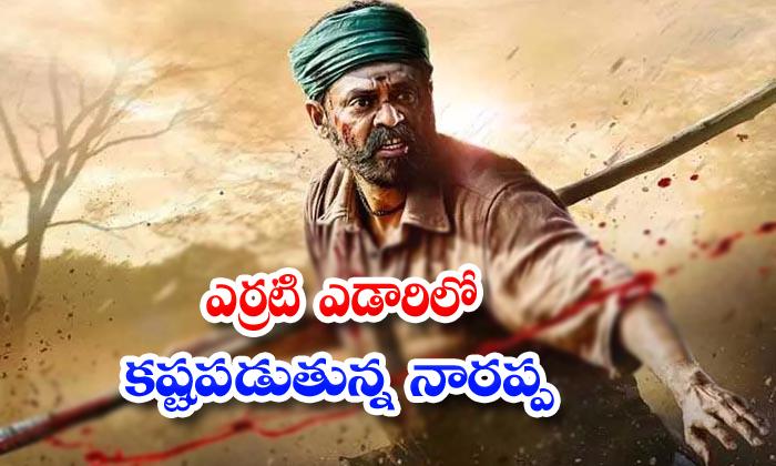 Victory Venkatesh Narappa Movie Shooting Is Going On Tamilnadu - Telugu Update Priyamani Latest