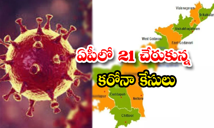 21 Corona Positive Cases In Andhra Pradesh