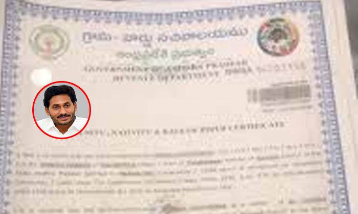 వివాదాస్పదమైన జగన్ ఫోటో, ప్రభుత్వ ధ్రువీకరణ పత్రాల పై కూడా-Breaking/Featured News Slide-Telugu Tollywood Photo Image