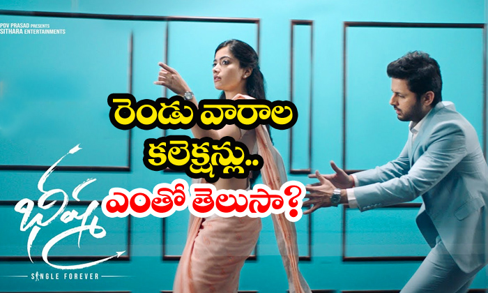 Bheeshma Two Weeks Collections