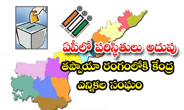 Election Commission Of India Focus On Ap Local Body Elections