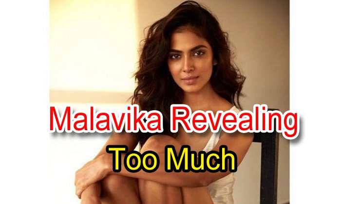 Malavika Revealing Too Much