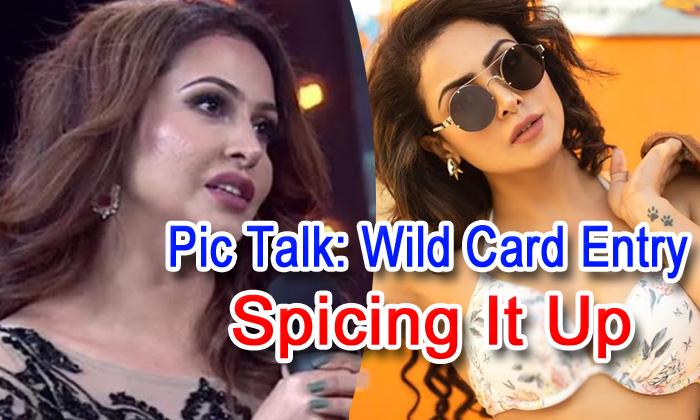 Pic Talk: Wild Card Entry Spicing It Up