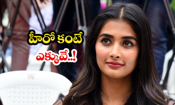 TeluguStop.com - Pooja Hegde Remuneration More Than Hero