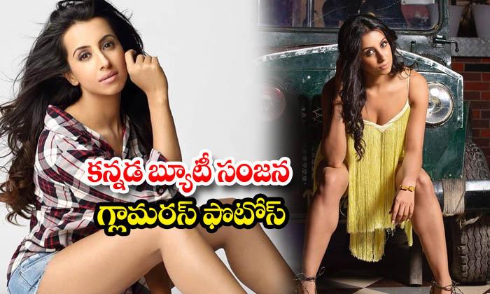Sizzling actress sanjjanaa galrani images