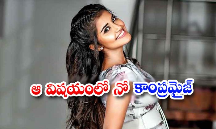 Anupama Not Interested To Act In Bold Characters - Telugu, Kollywood, South Cinema, Tollywood-Movie-Telugu Tollywood Photo Image