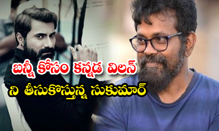 Bunny Fight With Two Villons For Sukumar Movie