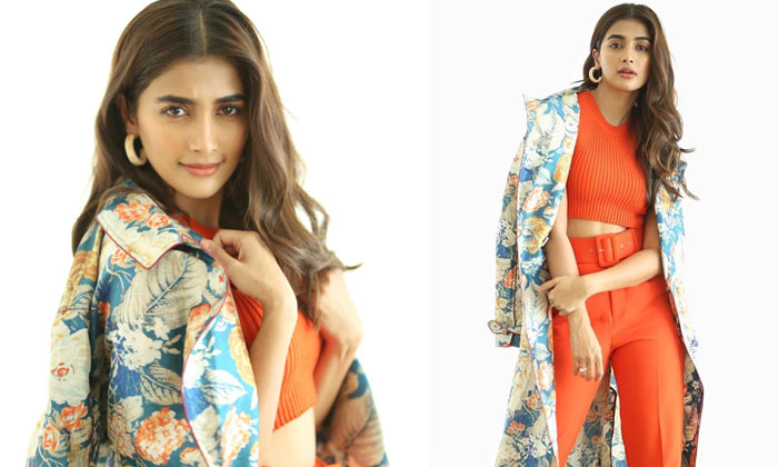Glamorous Pictures For Pooja Hegde - Telugu , Pooja Hegde Images, Pooja Hegde Latest Images, Pooja Hegde Latest Movie Ne High Resolution Photo
