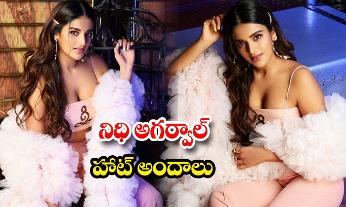 glamorous pictures of Nidhhi Agerwal