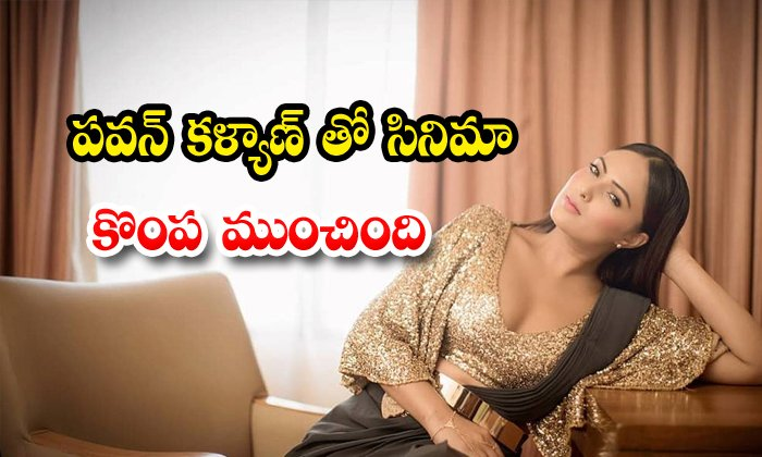 Nikesha Patel Open Up Her Failure In Tollywood
