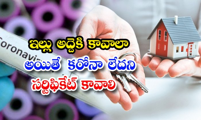 No Corona Certificate Need For Rental House In Hyderabad