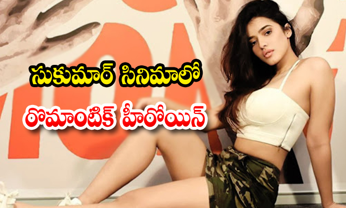 TeluguStop.com - Romantic Heroine Finalized Sukumar Production Movie