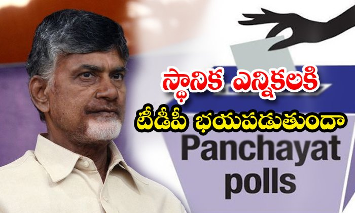 Tdp Tension On Ap Local Body Elections