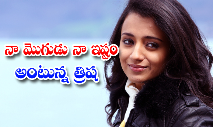 Trisha Interested Only On Love Marriage