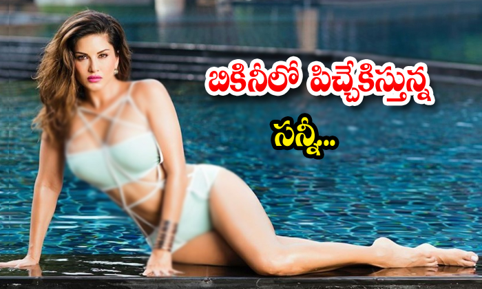 Sunny Leone Bollywood Actress Bikini News Bikini Photos Social Media Photo Talk